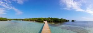 gilligans-island-guanica-12-770x273