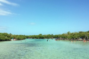 gilligans-island-guanica-14-770x514